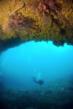 Dive sites Regona Cabo Verde3