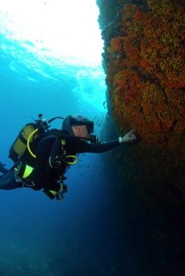 Dive sites dois olhos Cabo Verde9