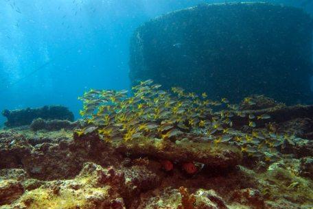 bolama Caldaia Cabo Verde _0003