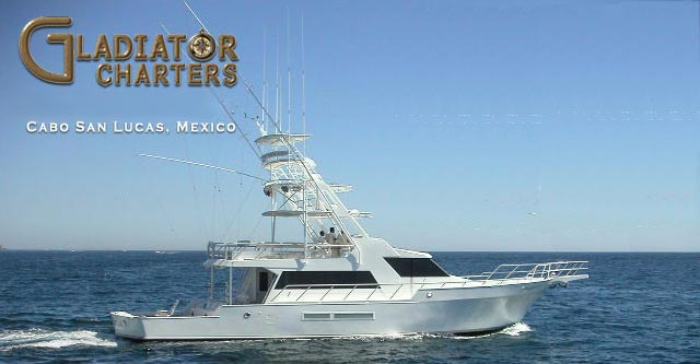 Gladiator Yacht Charters In Cabo San Lucas