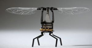 Científicos polacos crean abeja robótica que poliniza como real