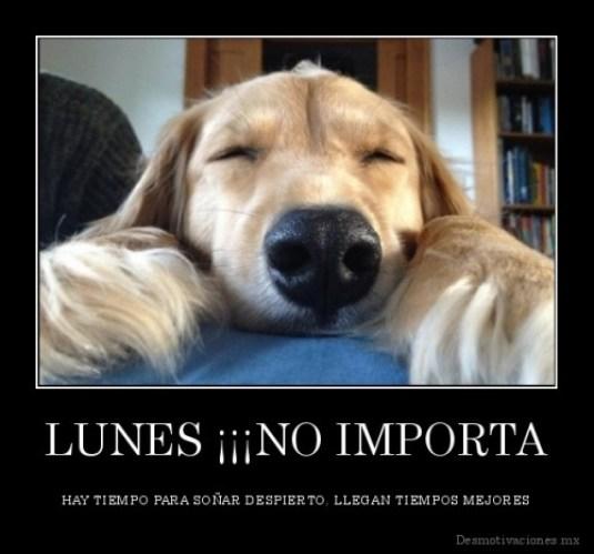 desmotivaciones.mx_LUNES-NO-IMPORTA-HAY-TIEMPO-PARA-SOAR-DESPIERTO-LLEGAN-TIEMPOS-MEJORES_133762