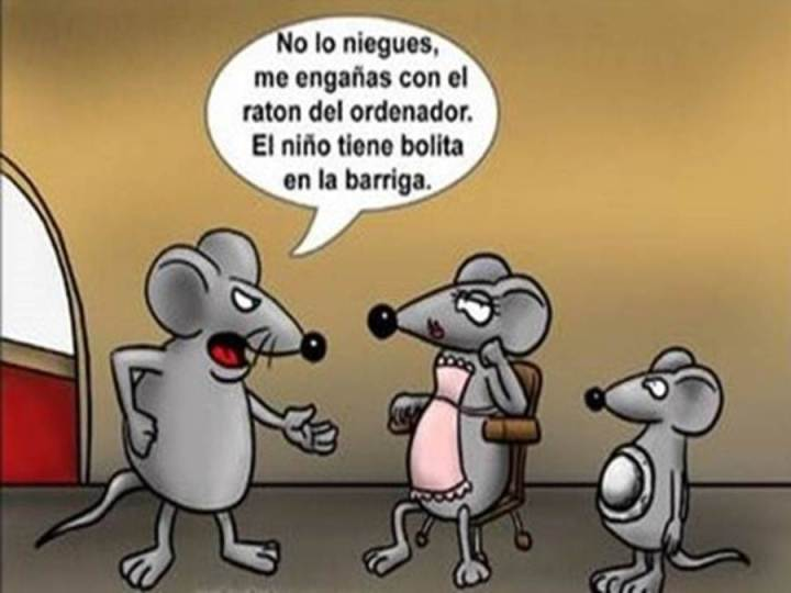 fotos-graciosas-raton