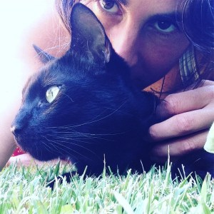gatos y personas compartiendo