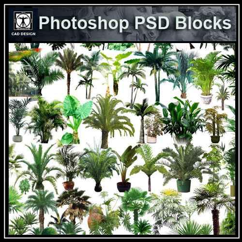 PSD Landscape Tree Blocks 4 – Download AUTOCAD Blocks