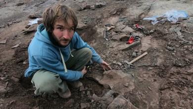 Photo of Paleontólogos argentinos hallaron un 'megarraptor' en la Patagonia
