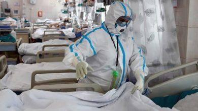Photo of COVID-19 en la Provincia: 1.360 casos y 14 muertes