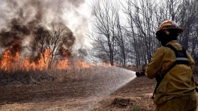 Photo of Continúan los incendios forestales en varias provincias argentinas