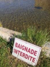 Baignade interdite - Parc Borely - Marseille 8e