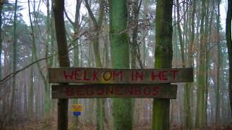 GR 128 Vlaanderenroute Begijnenbos