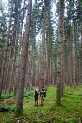 Escapardenne Eisleck Trail 1853