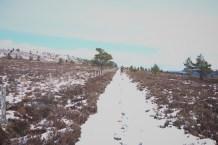 Hiking Schotland 2275