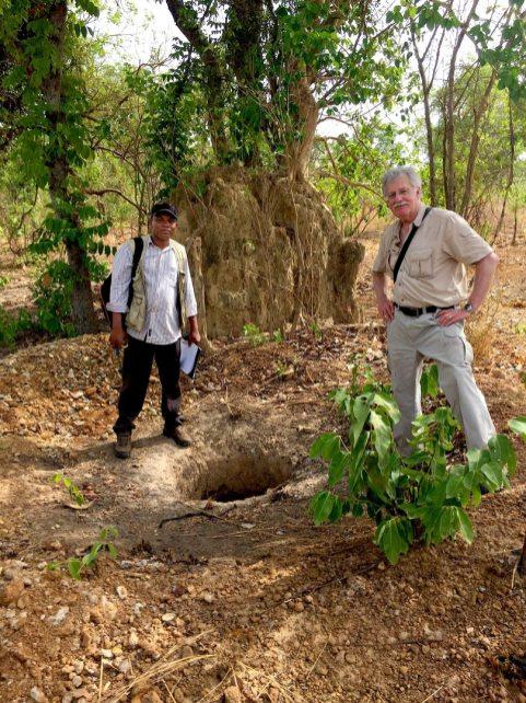 Termite Mound Sampling