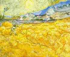Champs de blé derrière l'hôpital St-Paul avec un faucheur, St-Rémy, septembre 1889