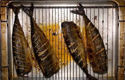 Makrela na ostro