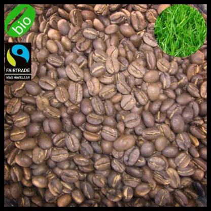Bio Blend - mélange de cafés fins - bio & équitable