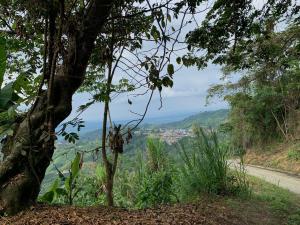 Buenavista Quindio, municipio a una cuadra del cielo, cafe origen