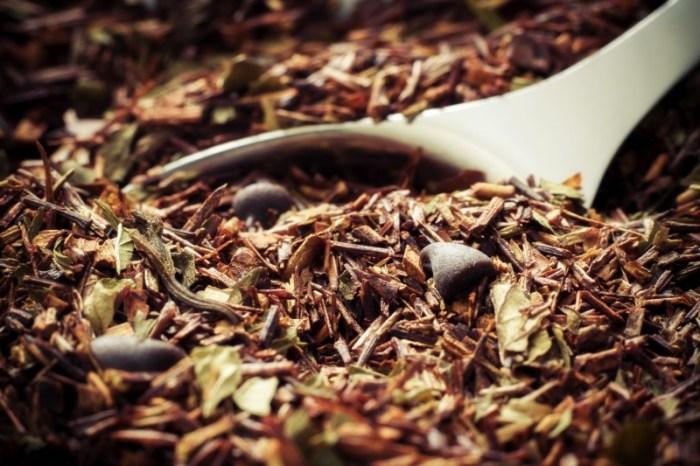 hojas de rooibos, secretos del rooibos