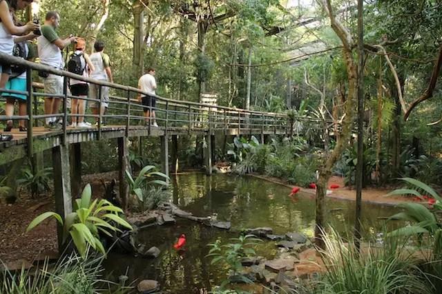 Parque das Aves3