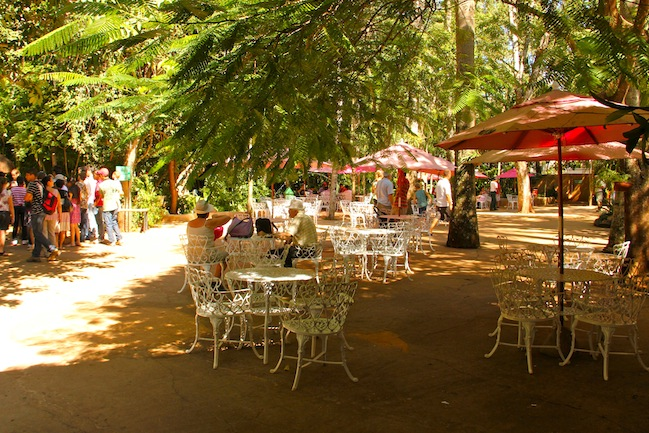 as mesas do restaurante e lancheria do Parque das Aves