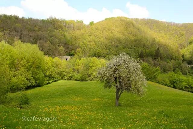 Montese Italia (3)