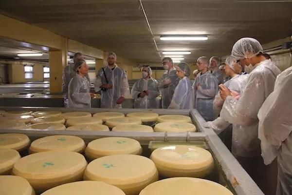 uma das últimas etapas antes do queijo envelhecer nas prateleiras