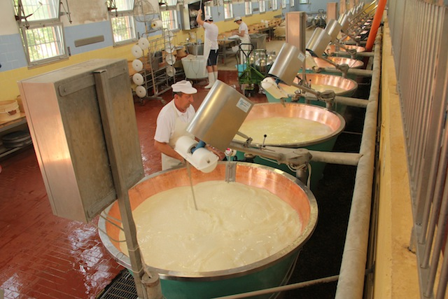Parmigiano Reggiano (4)