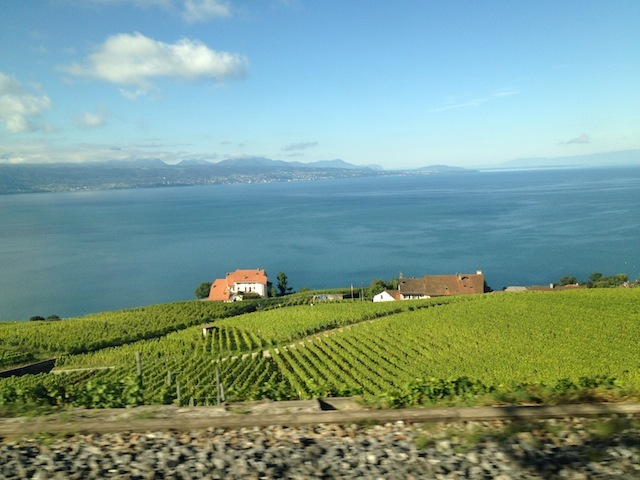 Visual do trem de Lausanne a Montreux pelo Lago Léman e vinhedos de Lavaux