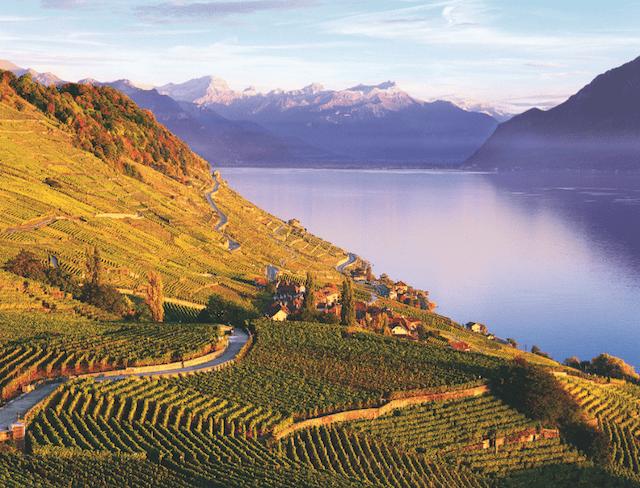 vinhedos de Lavaux Suíça