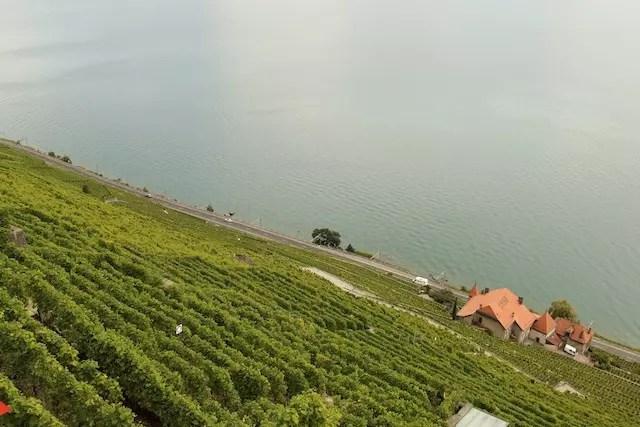 Roteiro vinhedos Lavaux Suiça