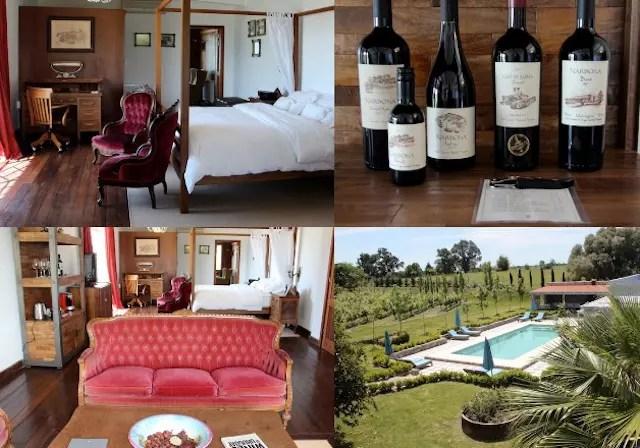 a suíte e a piscina do Wine Lodge Narbona