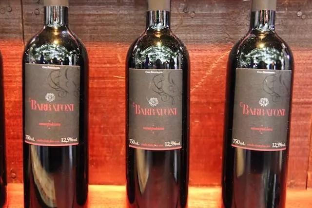 Os vinhos da Casa Seganfredo são uma novidade na região. Não deixe de provar!
