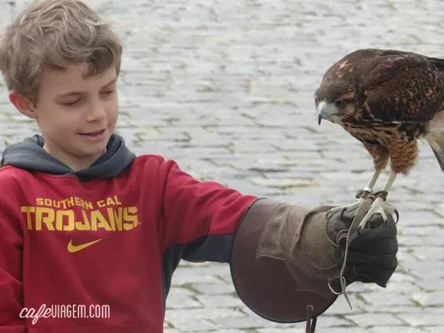 Atividade especial do dia: a falcoaria da Artfalcon (filhote amou)