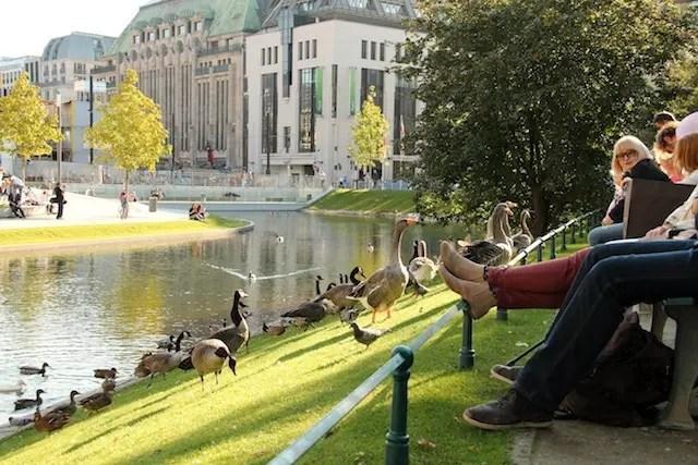 koebogen e parque