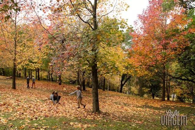 outono no Rio Grande do Sul