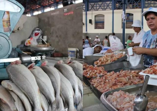 peixes mercado ver o peso