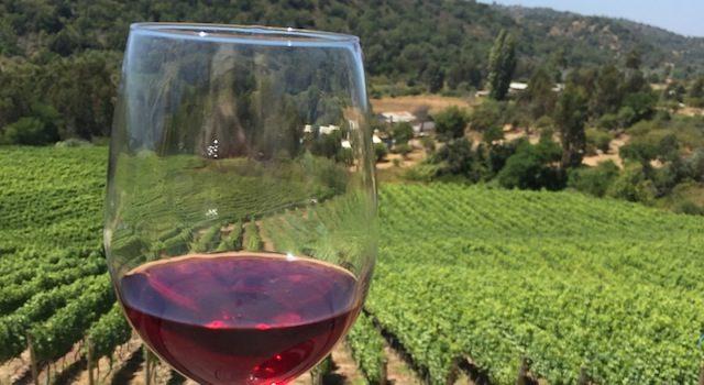 Roteiro Vinho Chile Exploring