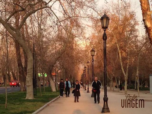 o Parque Forestal no inverno e outono é lindoooo