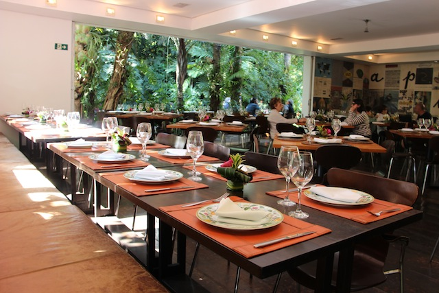 Inhotim Restaurante Tamboril (19)