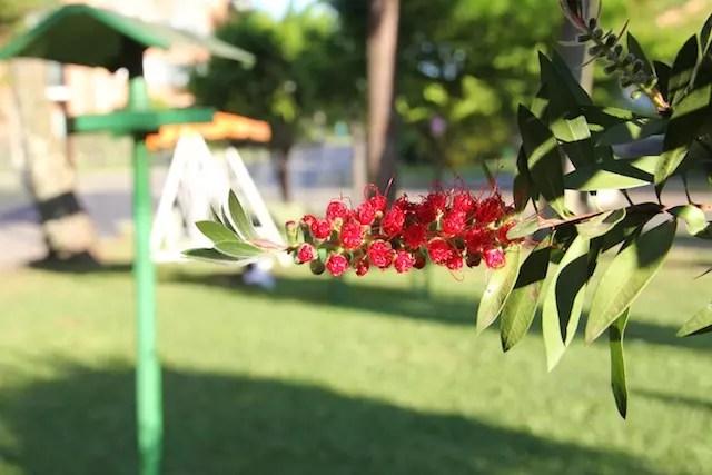 vila-suzana-parque-hotel-canela-33