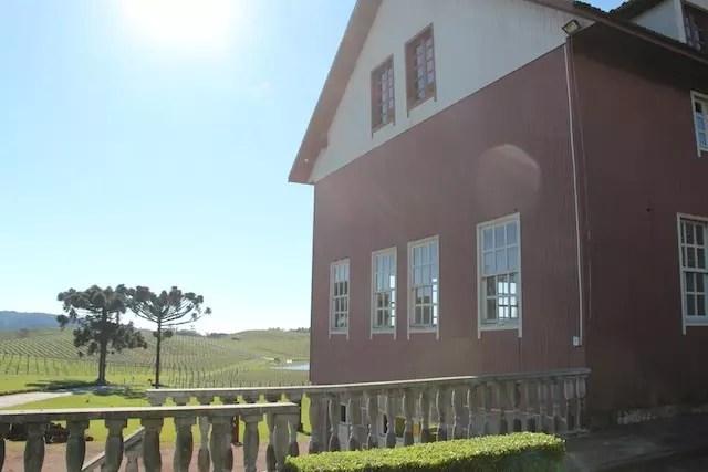 O lado antigo da vinícola