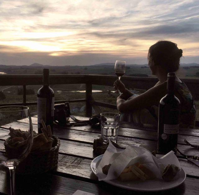 vinícola Alto de la Ballena Punta del Este