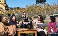 vinícolas em Santa Catarina