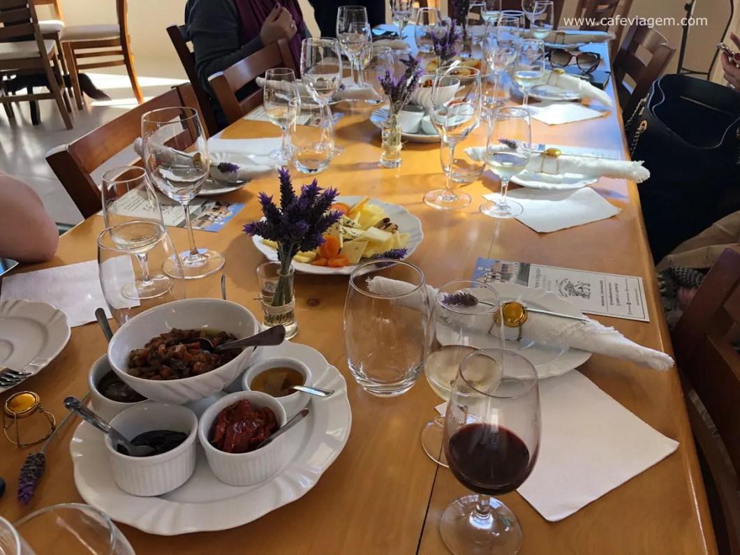 degustação vinícola Leone di Venezia