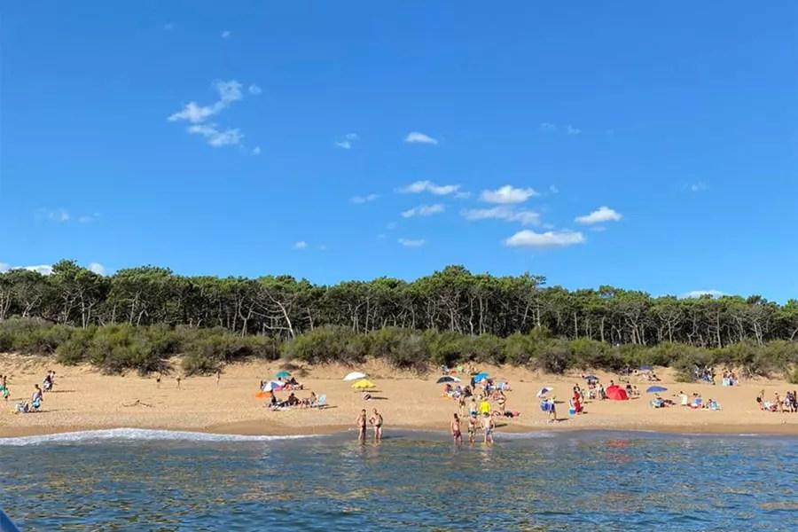 praia Ilha Gorriti Punta del Este