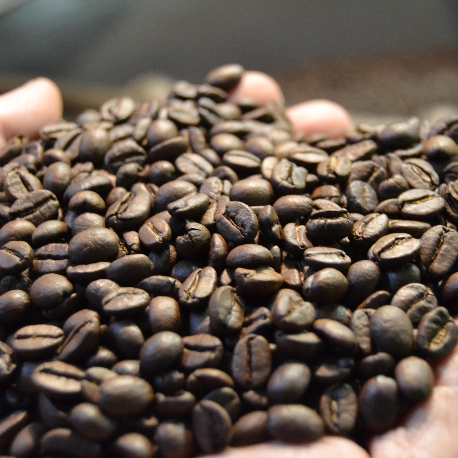 Torrefazione Caffè Chicco D'Oro | La Nostra Storia - Chicchi di caffè
