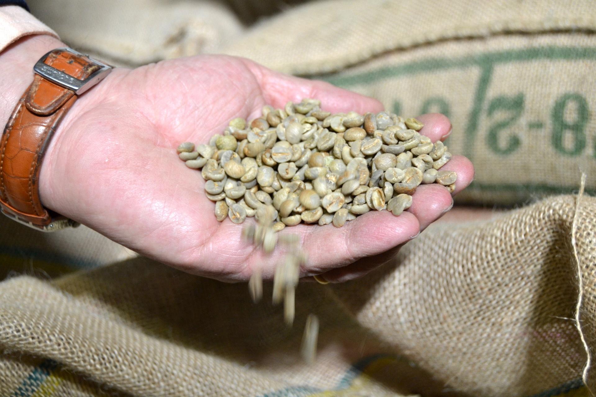 Torrefazione | Torrefazione Caffè Chicco D'Oro - Caffè crudo4