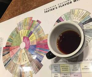 Coffee Cupping is a process coffee roasters like Ladro Roasting use to select new coffees or adjust a roast. The taster's flavor wheel helps cuppers to have a common language