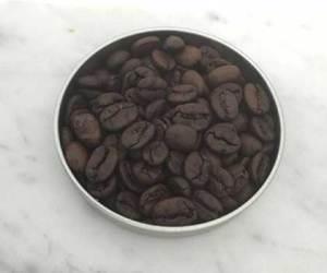 Coffee Roasting sample of dark roast coffee sample from caffe ladro ladro roasting
