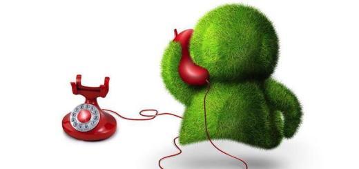 Neue Rufnummern für den Hauptsitz Karlsruhe lassen das Maskottchen von Communal FM zum roten Telefon greifen